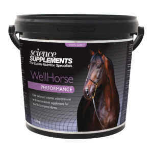 Science Supplements Wellhorse Performance
