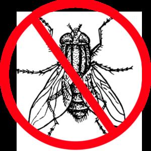 Putukatõrje koertele