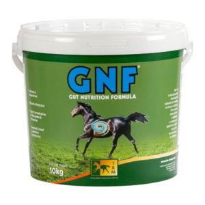 GNF seedesüsteemile