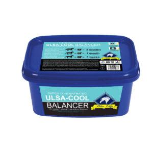 Kontsentraatsööt Blue Chip Balancer